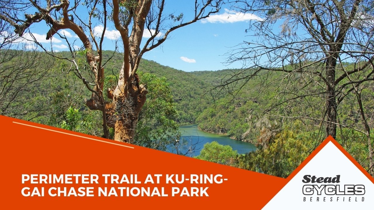 Perimeter Trail at Ku-ring-gai Chase National Park